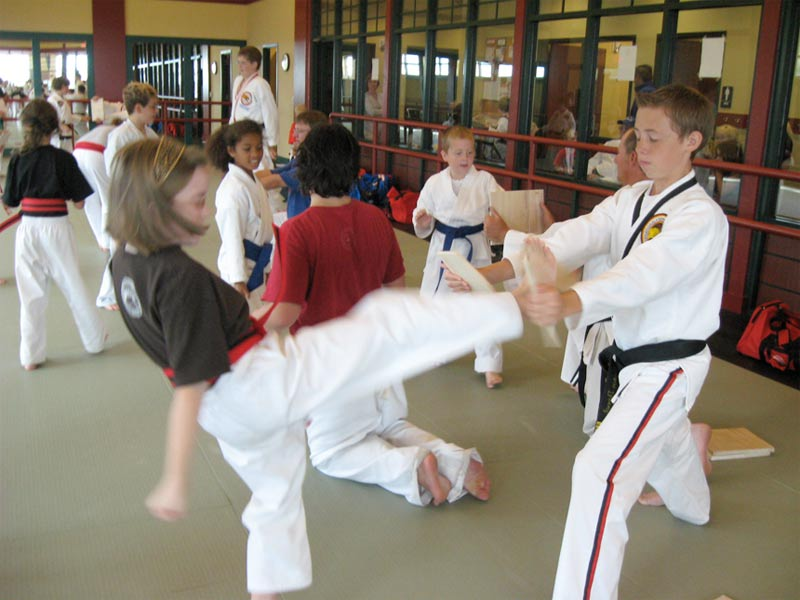 Tiger-Rock Tae Kwon Do Academy