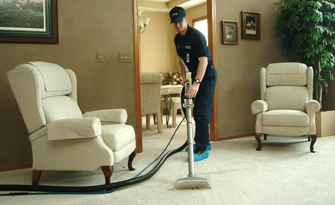 Professional Carpet Cleaner Working in a Home